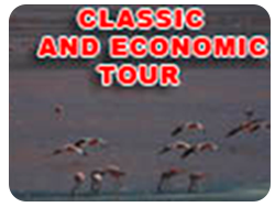 CLASSIC AND ECONOMIC TOUR